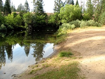 Find a quiet swimming hole and picnic area on Trinity Lake down the Stoney Swim Trail.
